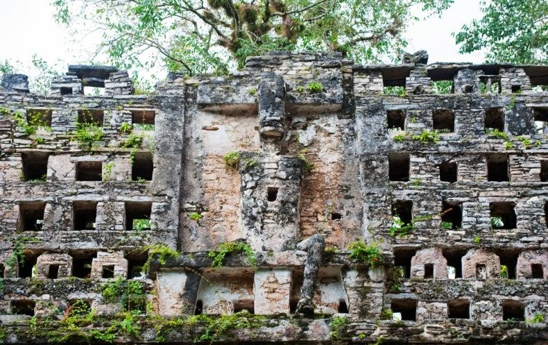 عظام تكشف اللثام عن طبيعة مجتمعات المايا القديمة
