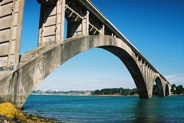 أوجين فريسينيه: أبو الجسور الحديثة