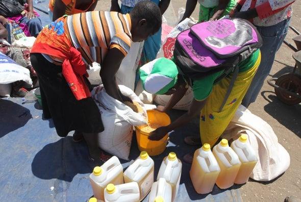 إستراتيجية بديلة للقضاء على الجوع دون استنزاف الموارد
