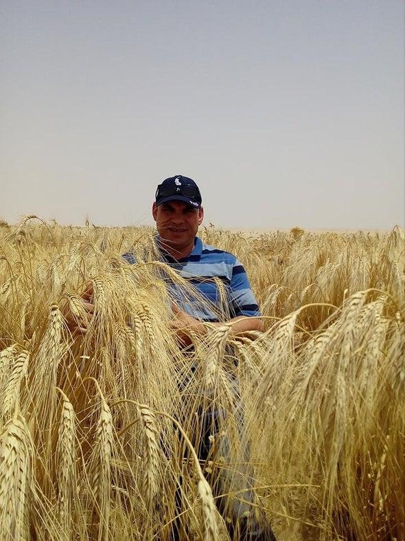 التغيرات المناخية في مصر جاءت بوتيرة أسرع من المتوقع