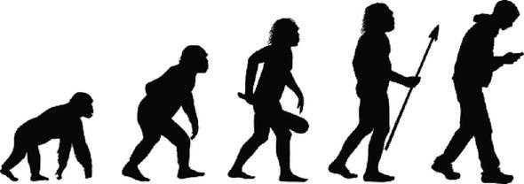 لا شيء بالصدفة.. كتاب يكسر حاجز الصمت تجاه نظرية التطور