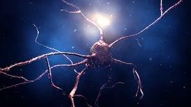 زرع خلايا جذعية مُعاد برمجتها في مريض مصاب بداء باركنسون