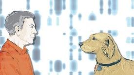 باحثون ينقبون عن مفاتيح لمرض السرطان في الكلاب الأليفة