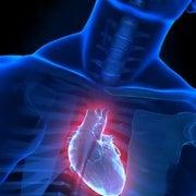 روبوت جديد يحاكي حركة عضلة القلب