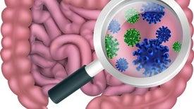 بكتيريا الجهاز الهضمي تحد من الاضطرابات النفسية