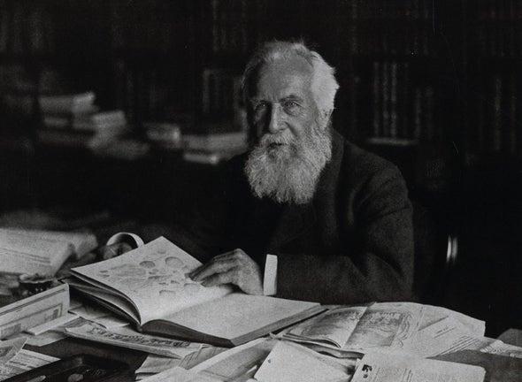 إرنست هيكل...الفنان الذي سجل أكتشافاته العلمية بالرسم