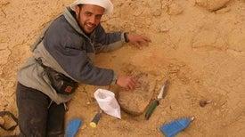 هشام سلام.. من مشتول السوق إلى منصوراصورس