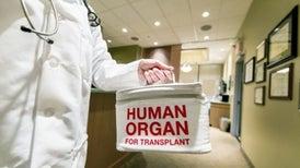 """الأعضاء البشرية """"للمدمنين"""" تصلح للزراعة في أجساد المرضى"""
