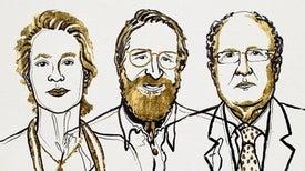 """الأمريكيان """"فرانسيس آرنولد"""" و""""جورج سميث"""" والبريطاني """"جريجوري وينتر"""" يتشاركون جائزة """"نوبل للكيمياء"""""""