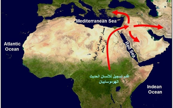 الصحراء الكبرى كانت واحة خضراء وهجرها «الإنسان العاقل» قبل 190 ألف سنة