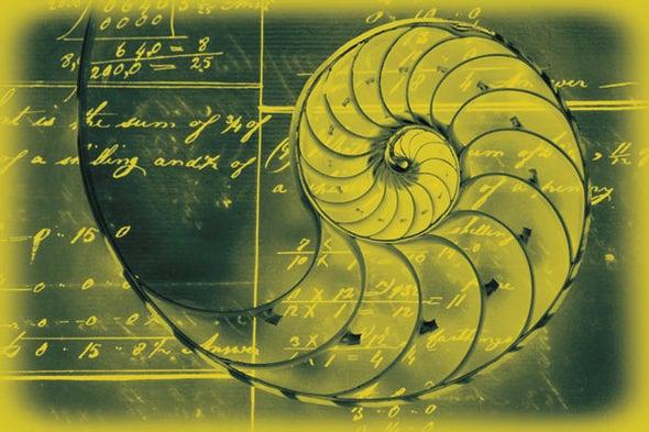 الجمال في الرياضيات والفنون ينشط المنطقة الدماغية نفسها
