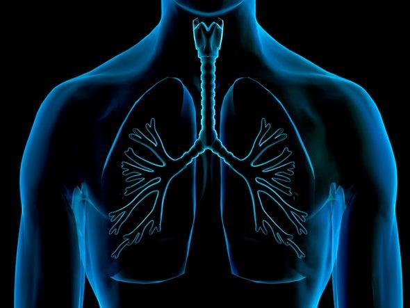 """تلوث الهواء يعجل بـ""""شيخوخة"""" الرئتين"""