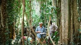 الحقيقة المُرَّة: معظم أنواع البنّ البرّي يواجه خطر الانقراض على مستوى العالم