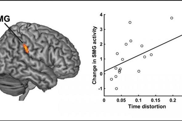 كيف يخلق الدماغ تجربة الإحساس بمرور الوقت؟