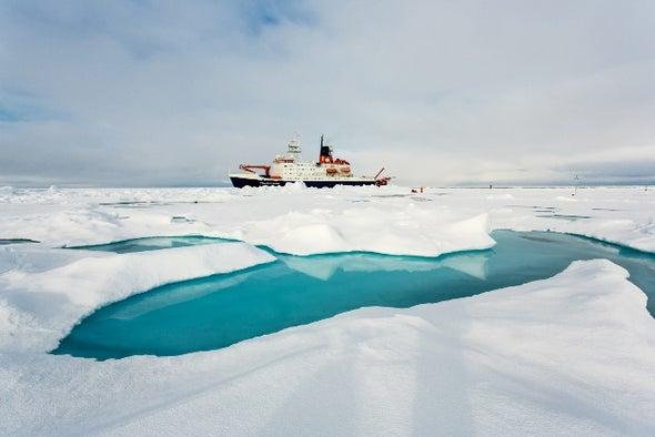 عمق المياه والمدخلات الغذائية يؤثران على الحيوانات البحرية القطبية