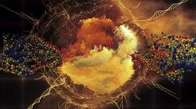 حان وقت استكشاف عالم الميكروبات من جديد