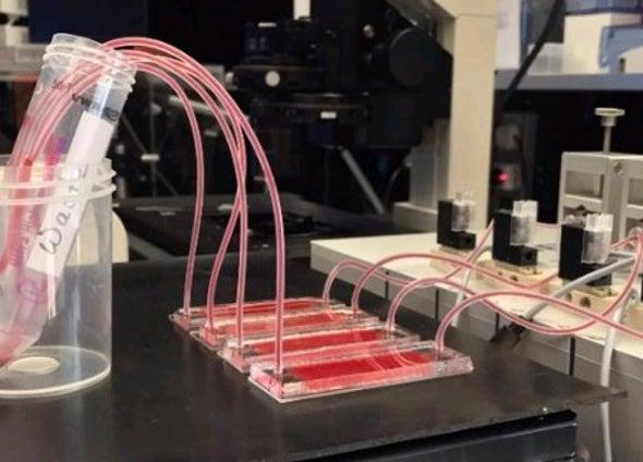 تقنية جديدة لدراسة الخواص الميكانيكية لخلايا أورام الدم