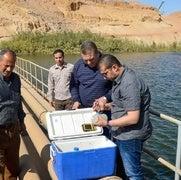مشروع بحثي يجد الحل لأزمة ارتفاع منسوب المياه الجوفية في أسوان