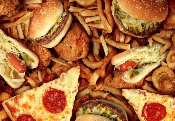 كيف يعرقل النظام الغذائي الغربي التعافي من إصابات الدماغ؟