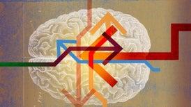 علم الأعصاب الكامن وراء تغيير الرأي