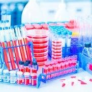 العلاج بالخلايا الجذعية لا يزال قيد البحث