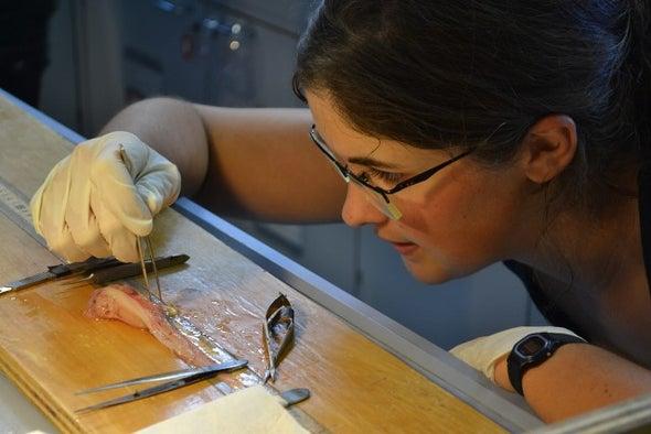 الزئبق السام يهدد الأسماك في أعمق خنادق المحيطات