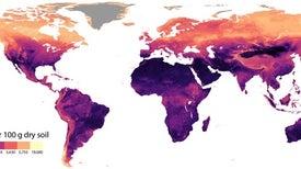خريطة تكشف تفضيل الديدان لدرجات الحرارة المنخفضة