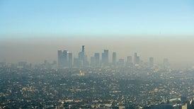 الصحة العالمية: 1.8 مليار طفل دون الخامسة عشرة يتنفسون هواءً ملوثًا