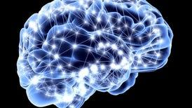 مرونة الدماغ سبيلك لخيارات أفضل