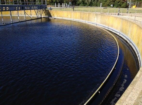 بكتيريا مُمرِضة في محطات معالجة مياه الصرف الصحي