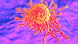 حركة الخلايا.. مفتاح لحل لغز السرطان