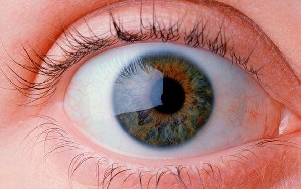 """""""ومضات العيون"""" وسيلة للتواصل بين البشر"""