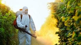 للإسراف في المبيدات.. فاتورة يدفعها الفلاح من صحته!