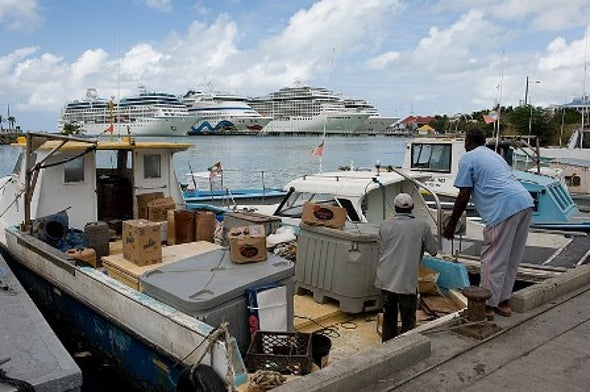 دراسة تكشف الجانب المظلم للتجارة عبر البحار