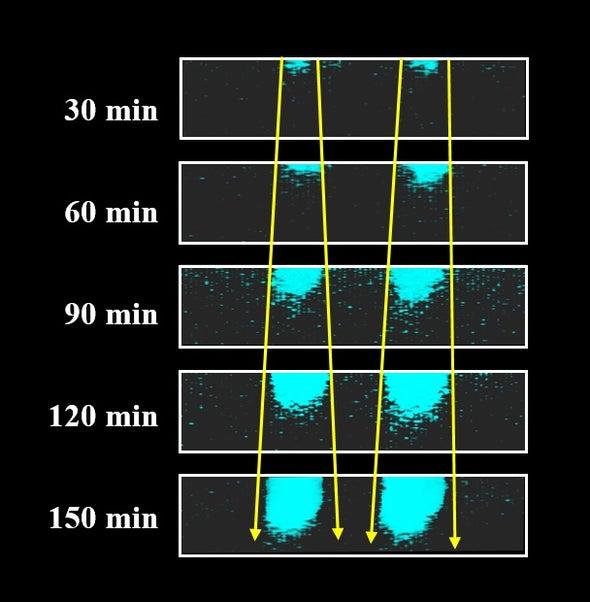 تقنية جديدة للكشف عن شيخوخة البوليمرات