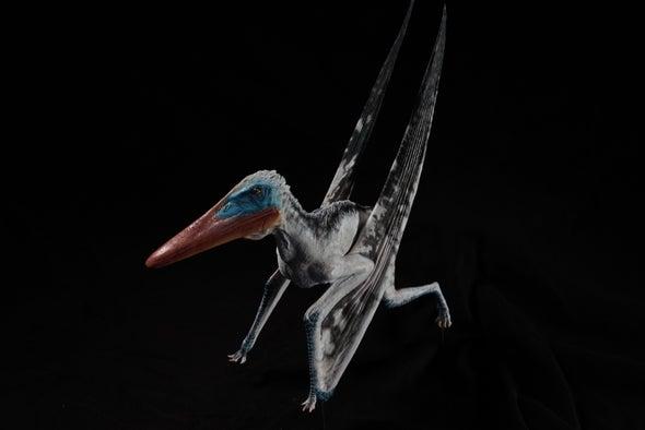 اكتشاف نوع جديد من التيروصورات في لبنان