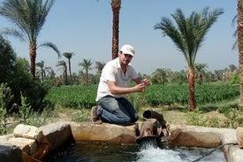احتياطيات كبيرة للمياه الجوفية في صحراء مصر الشرقية