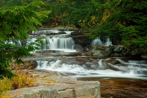 تراجُع مراقبة موارد المياه العذبة يهدد الأنظمة البيئية