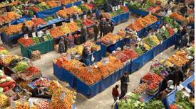 بعد إطلاق قانون الزراعة العضوية.. ماذا يعوق نجاح التجربة المصرية؟