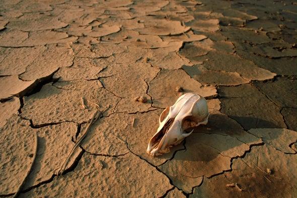 تغيير سلوكيات وأنماط الاستهلاك البشري ضرورة حتمية لمواجهة مخاطر التصحر والجفاف