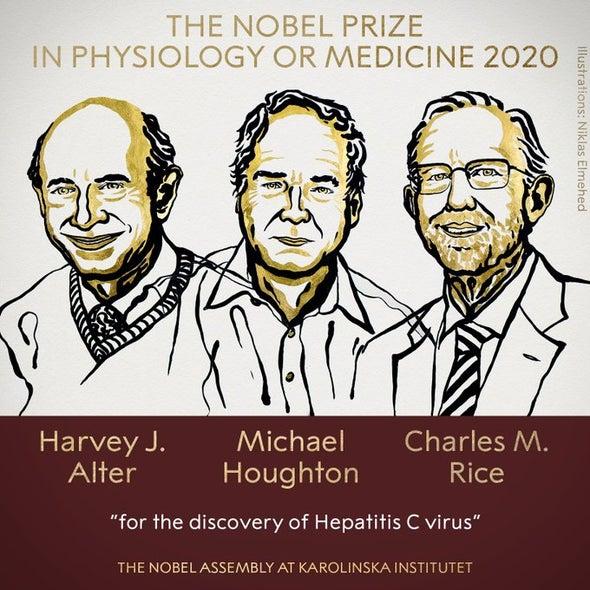 أحداث البداية من رواية «الالتهاب الكبدي سي» المثيرة تقتنص جائزة نوبل