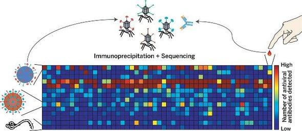 فيروس الحصبة يدمر ذاكرة الجهاز المناعي