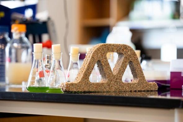 مواد بناء حية من البكتيريا والرمال