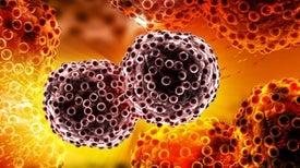اكتشاف جديد قد يقود إلى علاجات أفضل للسرطان