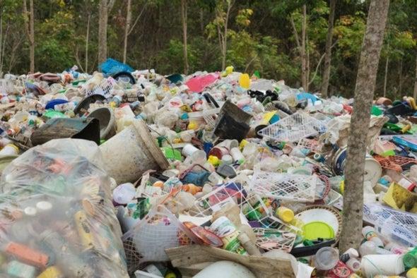بكتيريا تتغذى على البلاستيك الملوِّث في مقالب القمامة