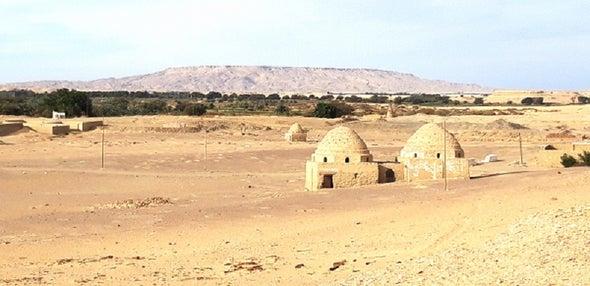 الواحات الداخلة بصحراء مصر الغربية ثباتٌ خادعٌ لبيئة دائمة التغير