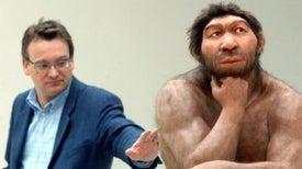 """صغر حجم أدمغة """"النياندرتال"""" تسبب في انقراضهم"""