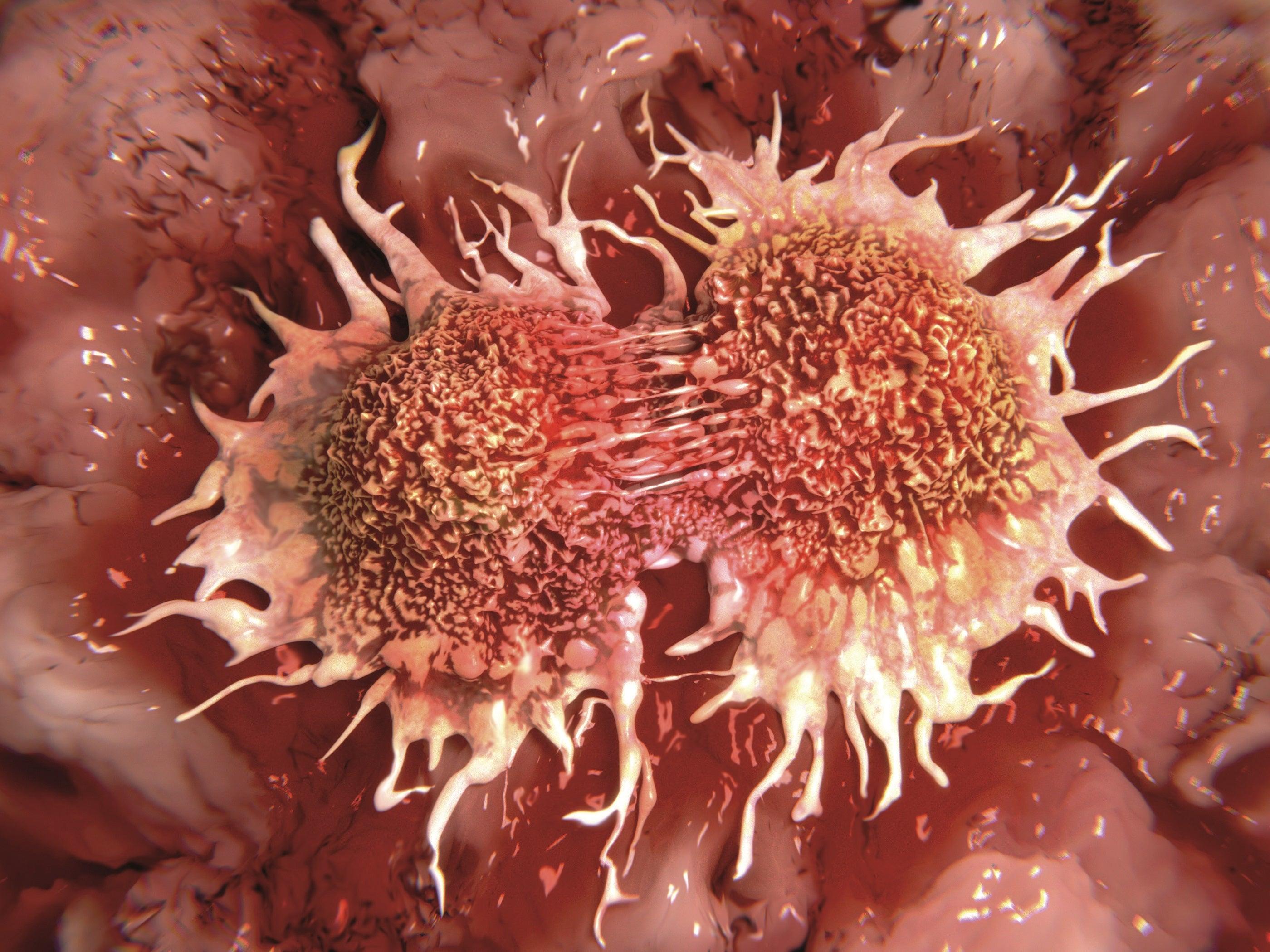 علماء: رحلة السرطان في الجسم تمُرُّ بالدم