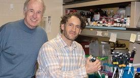 اكتشاف مسكن قوي لآلام الأعصاب يغني عن المورفينات
