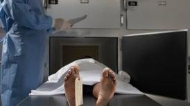 جينات الخلايا تظل حية بعد الوفاة